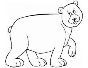 Медведи и мишки картинки раскраски (15)