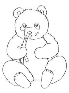 Медведи и мишки картинки раскраски (28)