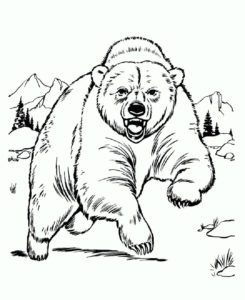 -и-мишки-картинки-раскраски-3-245x300 Медведи и мишки