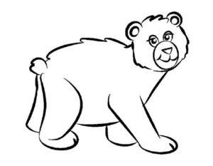Медведи и мишки картинки раскраски (7)