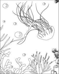 Медуза картинки раскраски (11)