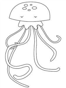 Медуза картинки раскраски (29)