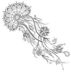 Медуза картинки раскраски (30)