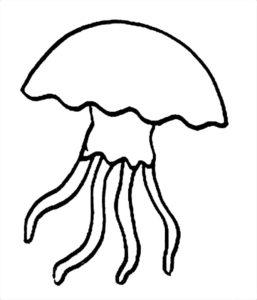 Медуза картинки раскраски (32)