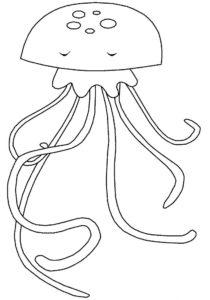 Медуза картинки раскраски (42)