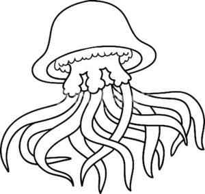 Медуза картинки раскраски (45)