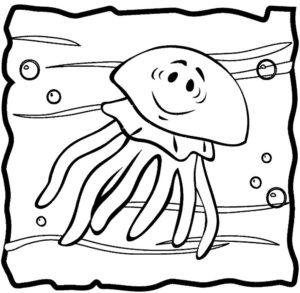 Медуза картинки раскраски (46)