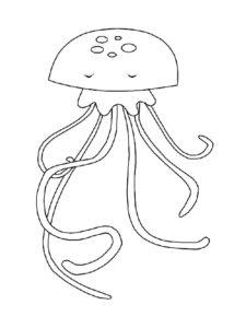 Медуза картинки раскраски (7)