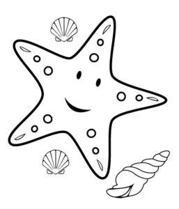 Морская звезда картинки раскраски (19)