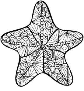 Морская звезда картинки раскраски (27)