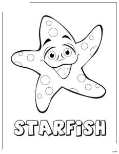 Морская звезда картинки раскраски (5)