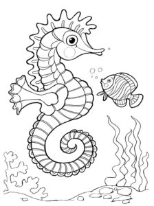 Морской конек картинки раскраски (10)