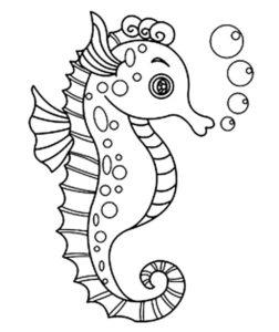 Морской конек картинки раскраски (12)