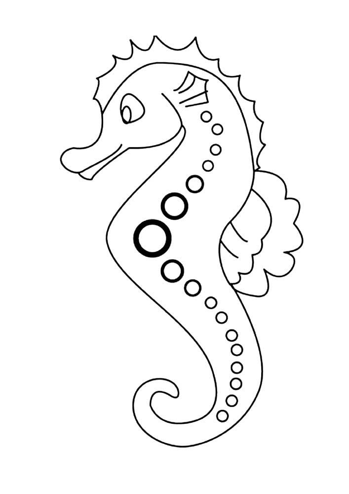 возможность морской конек рисунок контурный это обитатель