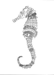 Морской конек картинки раскраски (23)