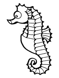 Морской конек картинки раскраски (40)