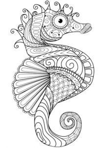Морской конек картинки раскраски (41)