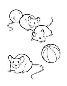 Мышонок картинки раскраски (11)