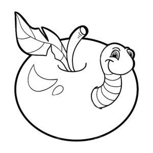 Насекомые гусеница картинки раскраски (42)