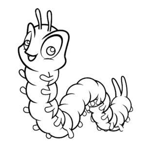 Насекомые гусеница картинки раскраски (44)