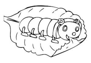 Насекомые гусеница картинки раскраски (52)