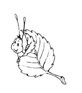 Насекомые гусеница картинки раскраски (53)