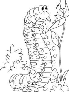 Насекомые гусеница картинки раскраски (56)