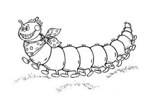Насекомые гусеница картинки раскраски (6)