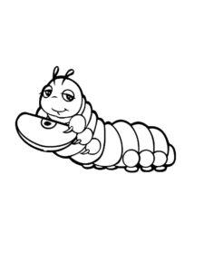 Насекомые гусеница картинки раскраски (60)