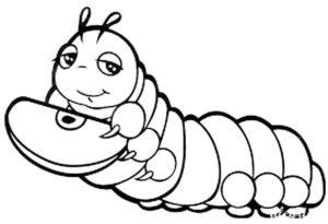 Насекомые гусеница картинки раскраски (74)