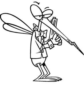 Насекомые комар картинки раскраски (15)