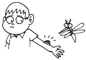Насекомые комар картинки раскраски (17)