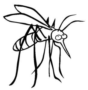 Насекомые комар картинки раскраски (21)