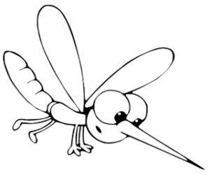 Насекомые комар картинки раскраски (35)