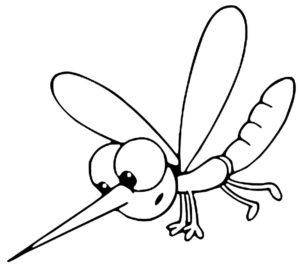 Насекомые комар картинки раскраски (38)