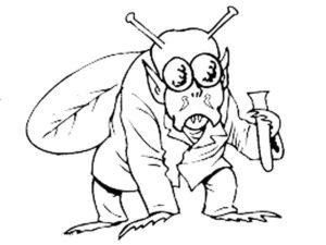 Насекомые муха картинки раскраски (14)