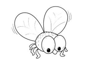 Насекомые муха картинки раскраски (28)