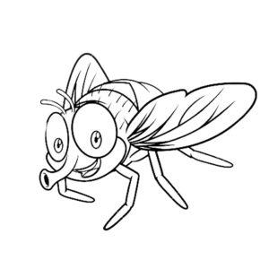 Насекомые муха картинки раскраски (30)