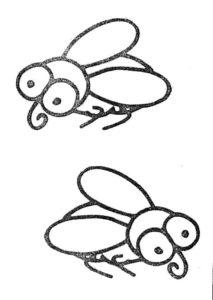 Насекомые муха картинки раскраски (32)