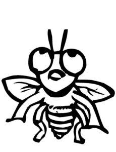Насекомые муха картинки раскраски (35)