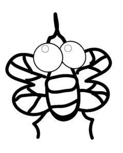 Насекомые муха картинки раскраски (42)