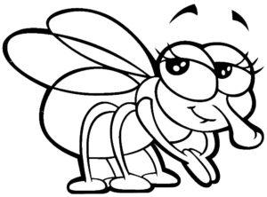 Насекомые муха картинки раскраски (52)