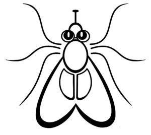 Насекомые муха картинки раскраски (6)