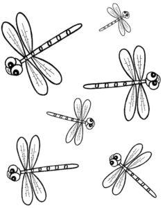 Насекомые стрекоза картинки раскраски (11)