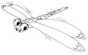 Насекомые стрекоза картинки раскраски (19)