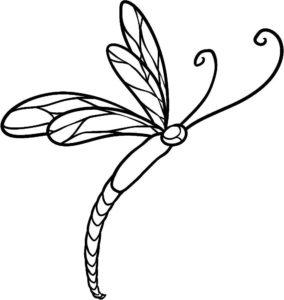 Насекомые стрекоза картинки раскраски (35)
