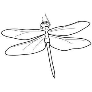 Насекомые стрекоза картинки раскраски (43)