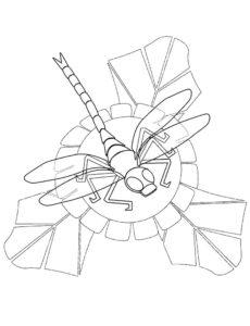 Насекомые стрекоза картинки раскраски (6)