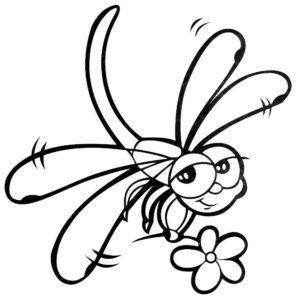 Насекомые стрекоза картинки раскраски (7)