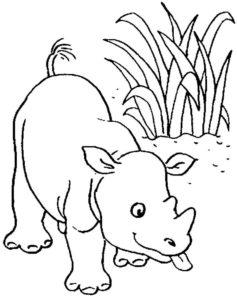 Носорог картинки раскраски (1)